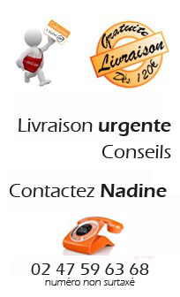 Besoin de plus d'informations? Contactez-nous